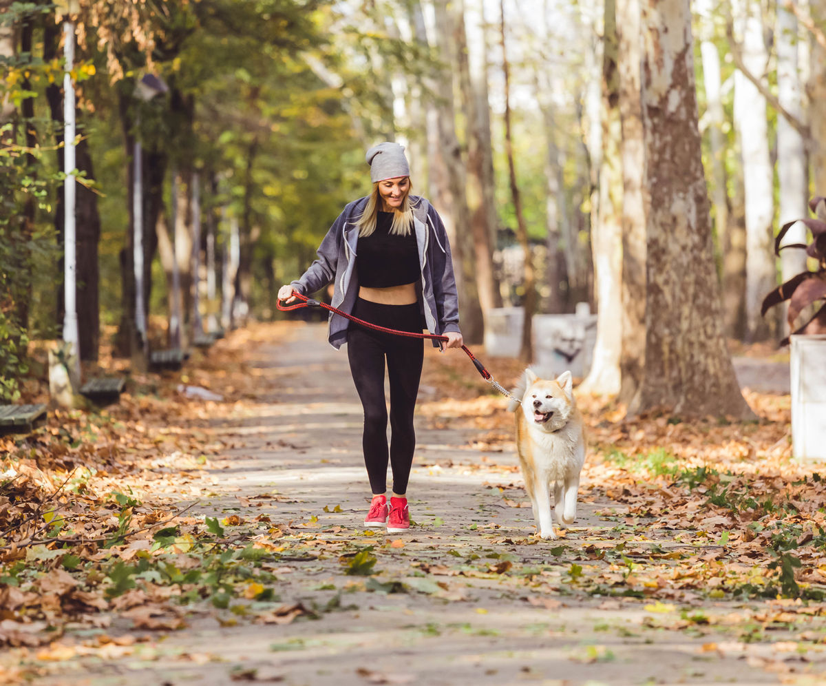 Take your dog for a walk along the many trails near pet friendly hotels in Saskatoon.
